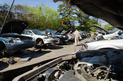 Man is looking for parts on a junk yard Royalty Free Stock Images