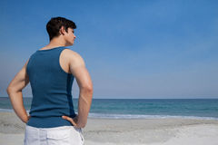 Man looking at sea from beach Royalty Free Stock Photography