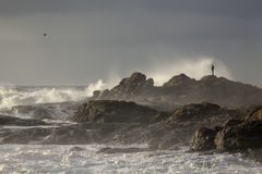 Man looking at stormy sea Royalty Free Stock Photos