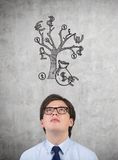 Man looking to money tree Stock Images