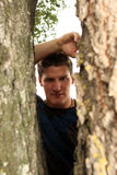 Man Looking Through Tree. A man peering through the trunk of a tree Royalty Free Stock Photography
