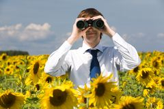 Man looking at you. Portrait of businessman looking through binoculars in sunflower field Stock Photos