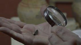 A man looks at an antique arrowhead. A man looks at an antique tip for an arrow through a magnifying glass stock video