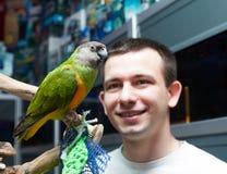 Man looks at Senegal parrot stock photo
