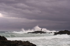 Man looks for shellfish on rocks in stormy sea. A lone figure looks for fresh oysters and mussels on rocks being battered by a stormy sea Stock Photos