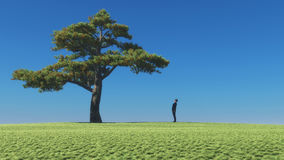 Man looks at a tree. On a field full of grass. This is a 3d render illustration Royalty Free Stock Photos
