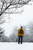 Man looks at the winter forest stock photography