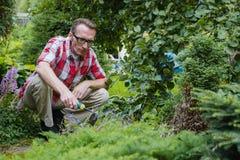 Man loosen the soil Stock Images