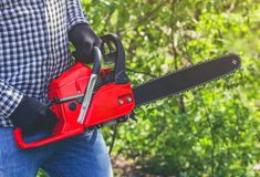 A man - Lumberjack in a black and white checkered shirt sawing a chainsaw. In a forest Royalty Free Stock Photography