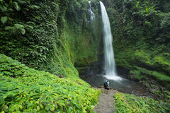 Man by lush green tropical Rain forest waterfall Stock Photos