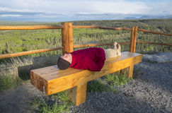 Man Lying on a Bench in a Park Royalty Free Stock Image