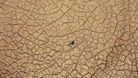 Man lying in a dry land. Saragossa, Aragon, Spain. Europe.