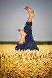 Man lying in wheat field Stock Image