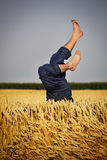 Man lying in wheat field Stock Photography