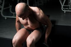 Man On Machine Exercising Quadriceps And Glutes. Strong Man In The Gym And Exercising Quadriceps And Glutes On Machine - Muscular Athletic Bodybuilder Fitness Royalty Free Stock Image