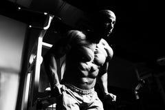 Man On Machine Exercising Quadriceps And Glutes. Strong Man In The Gym And Exercising Quadriceps And Glutes On Machine - Muscular Athletic Bodybuilder Fitness Royalty Free Stock Photo
