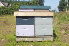 Man-made Beehive Box Royalty Free Stock Photo