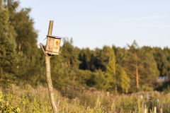 Man made birdhouse at sunset Royalty Free Stock Photography