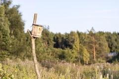 Man made birdhouse at sunset Stock Image