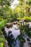 Man-made calm river in botanic garden Stock Image