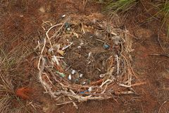 Man Made Nest Royalty Free Stock Photos