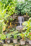 Man-made waterfall in butterfly garden Royalty Free Stock Images