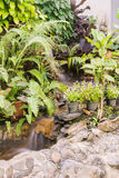 Man-made waterfall in butterfly garden Royalty Free Stock Image