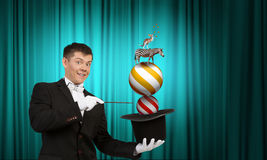 Man magician with cylinder hat Royalty Free Stock Photo