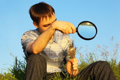 Man with magnifier is sitting and burning grasses. One man wearing shirt and jeans with magnifier is sitting on a meadow and burning grasses stock images