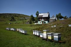 The man-maid hives in the village estate Royalty Free Stock Images