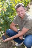 A man maintaining his vineyard smiling at camera in the grape fields stock image