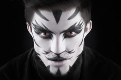 Man in make-up, looks like a cat. Stock Image