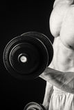 Man makes exercises dumbbells Royalty Free Stock Photo