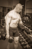 Man makes exercises dumbbells Stock Image