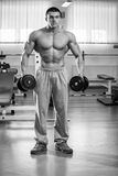 Man makes exercises dumbbells. Sport, power, dumbbells, tension, exercise. Article about fitness and sports.Gym and fitness concept - bodybuilder and dumbbell royalty free stock photography
