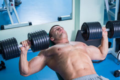 Man makes exercises. Man at the gym. Man makes exercises. Sport, power, dumbbells, tension, exercise - the concept of a healthy lifestyle. Article about fitness Royalty Free Stock Image