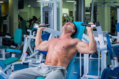 Man makes exercises. Man in the gym. Working out with weights.Man makes exercises. Sport, power, dumbbells, tension, exercise - the concept of a healthy Stock Image