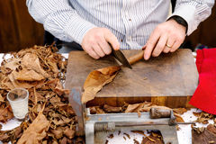 Man making cigars Royalty Free Stock Photos