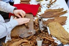Man making cigars Stock Images
