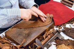 Man making cigars Royalty Free Stock Photo