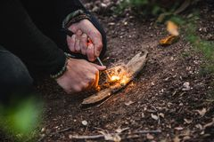 Man making fire with tinder polypore fungus in a forest. Closeup of a man preparing a fire in nature with tinder fungus fomes fomentarius stock photo
