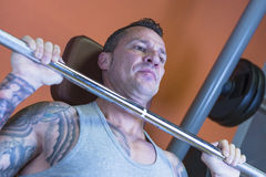 Man making military press - workout routine. Closeup of a man making seated barbell military press - dorsal exercise - at the gym - start exercise - focus on the royalty free stock photography
