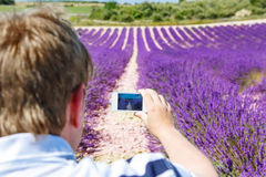 Man making picure with mobile phone of lavender field. Man making picure with mobile phone of beautiful blooming lavender fields near Valensole in Provence Stock Photos