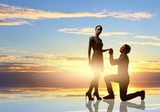 Man making proposal Royalty Free Stock Photography