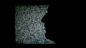 Man making Shhh sign with finger. Silhouette of unshaven male in front of static TV noise background. Stock Photos