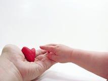 Man& x27; mani del bambino e di s con cuore rosso Fotografie Stock Libere da Diritti