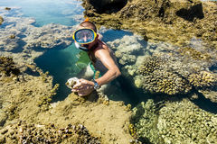 Man in the mask floats on a coral reef in the  Sea Stock Images