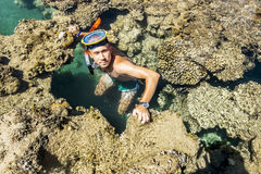 Man in the mask floats on a coral reef in the  Sea Royalty Free Stock Photography