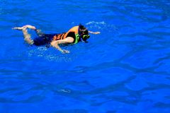 Man with mask snorkeling and in blue water stock image