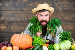 Man mature bearded farmer hold vegetables wooden background. Farmer straw hat with fresh harvest. Homegrown harvest stock photos